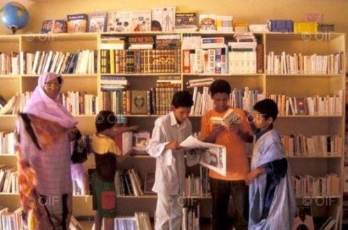 Article : Trafic des manuels scolaires en Mauritanie: l'Institut Pédagogique National tape du poing sur la table